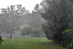 rain_650_011916051209